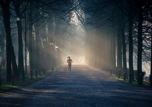 hardlopen bos afslanken